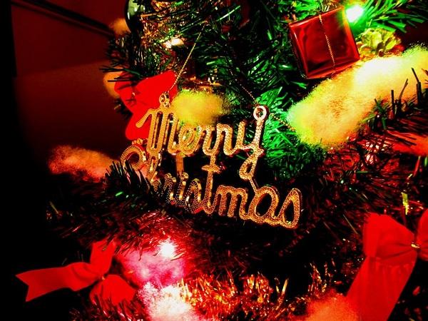 今週のお出迎えは・・・12月23日サムネイル